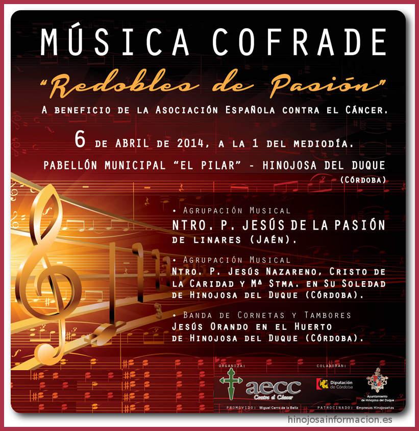 conciertobandasaacc0014
