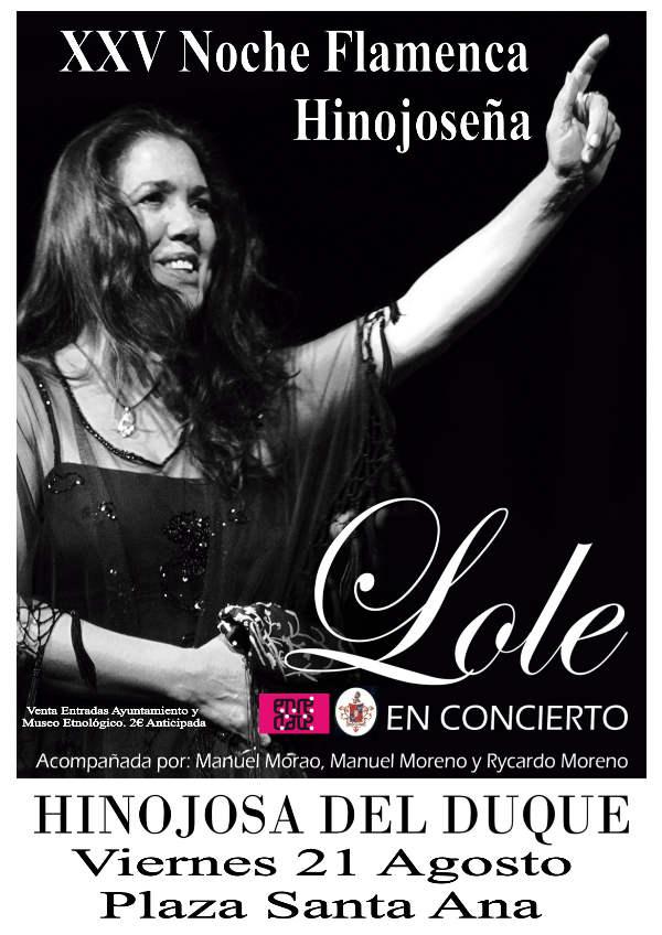 XXV noche flamenca hinojoseña