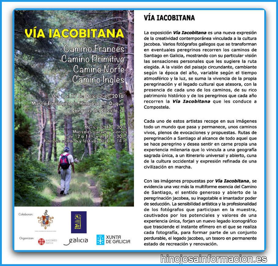 viaiacobitana16